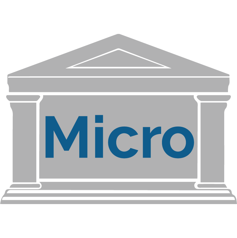 software per microcredito
